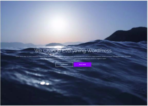 The Best Free WordPress Themes