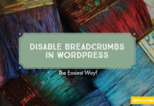 How to Disable Breadcrumbs in WordPress