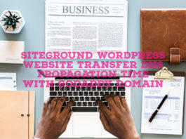 SiteGround WordPress Website Transfer DNS Propagation Time With GoDaddy Domain