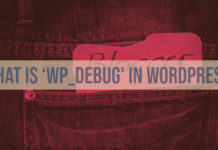 What is 'WP_DEBUG' in WordPress?